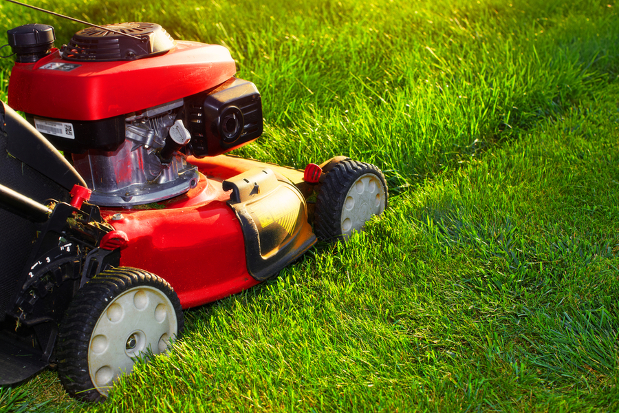 About The Lawn Mowing Franchise Business in Australia
