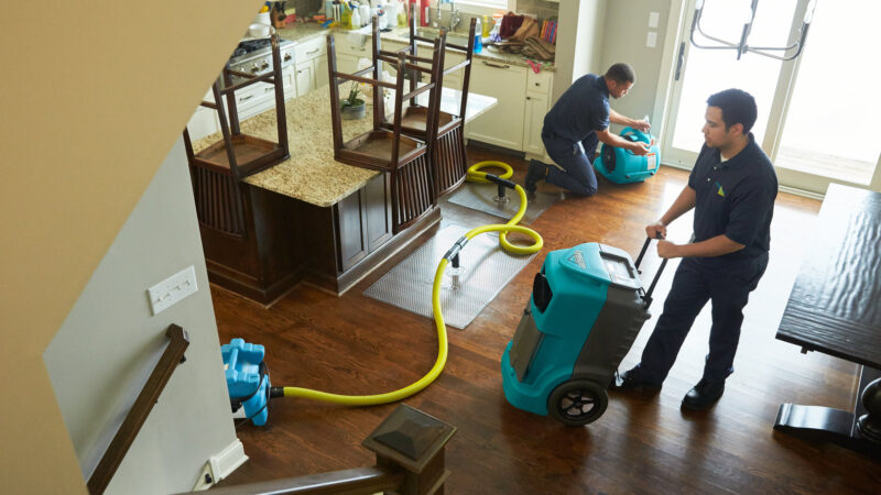 Why pick a reputable water damage repair company